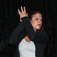 Flamenco & Rock andaluz (en vivo)